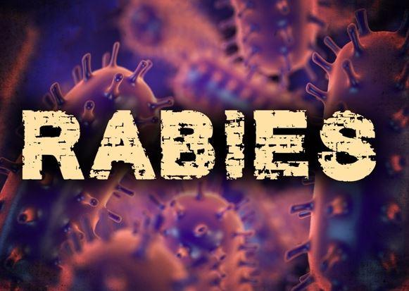 rabies_19889