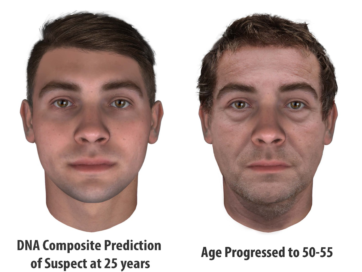 Images produced by DNA phenotyping show what the suspect may have looked like at age 25 (left) and 30 years later at age 50 or 55 (right)._238057
