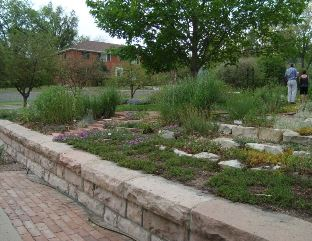 LANDSCAPING_266683