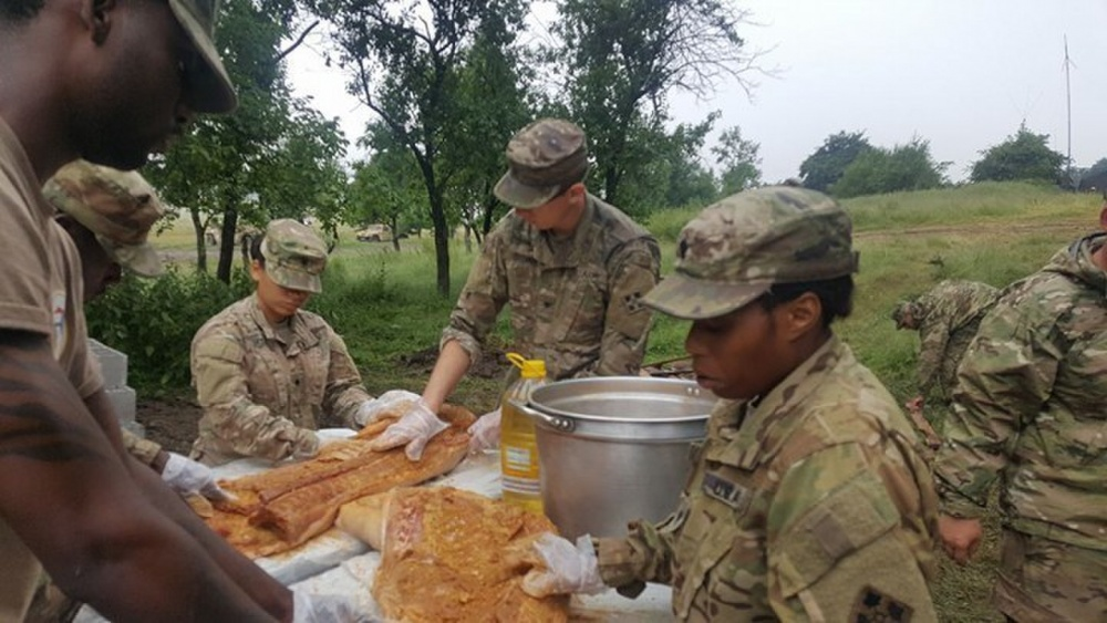 3rd Armored Brigade Combat Team celebrating Independence Day in Romania_283836