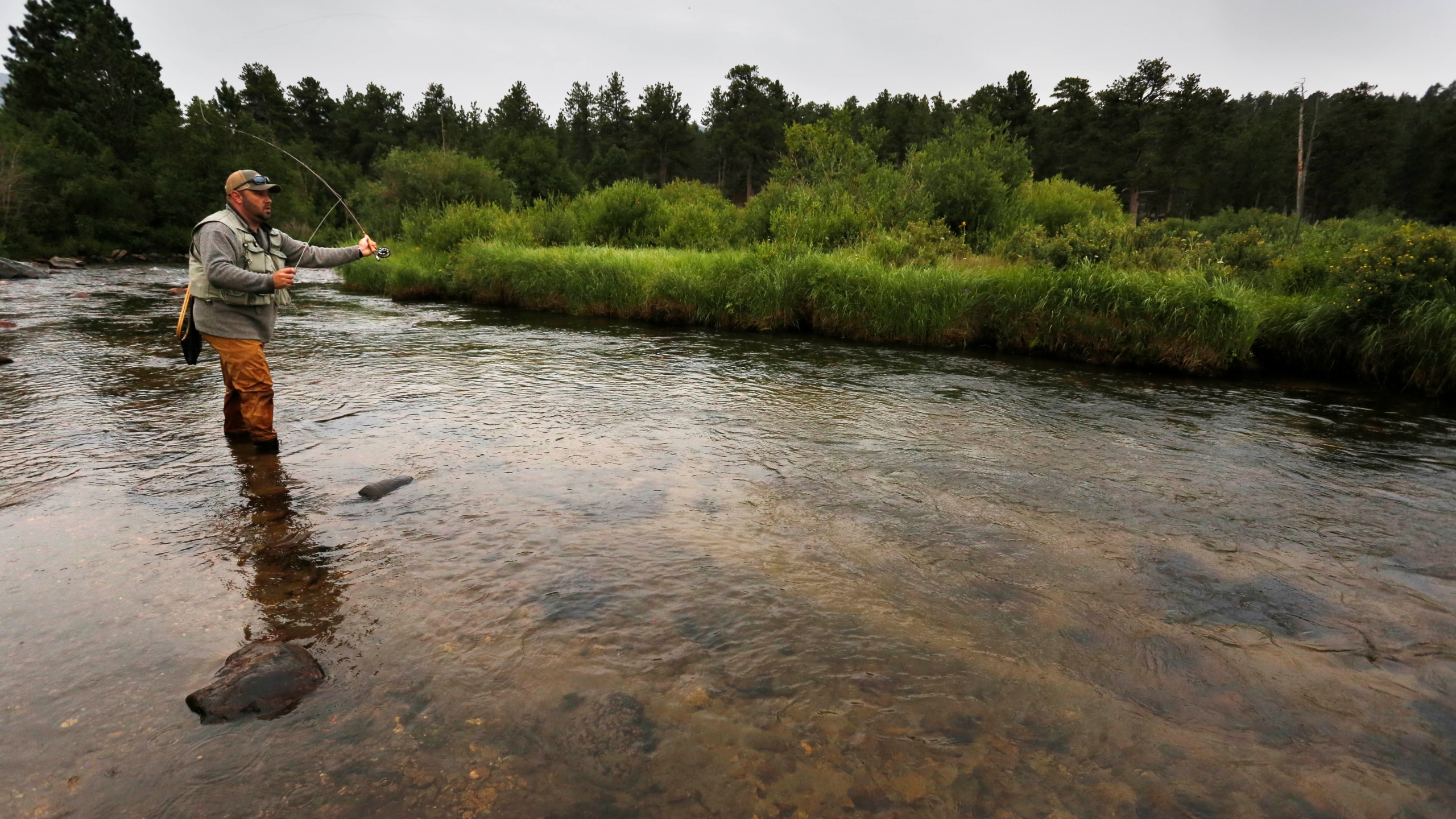 Angler Chris Atkins of Allendale, Mich., fly fishes on a pristine meandering stream inside Rocky Mountain National Park, near Estes Park, Colo., on Au