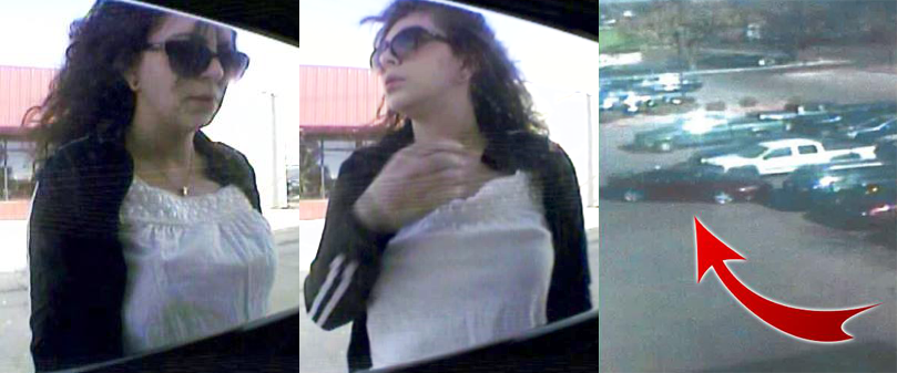 Surveillance images show the suspect accused of breaking into a car and stealing a purse in Pueblo last month. Pueblo Police Department