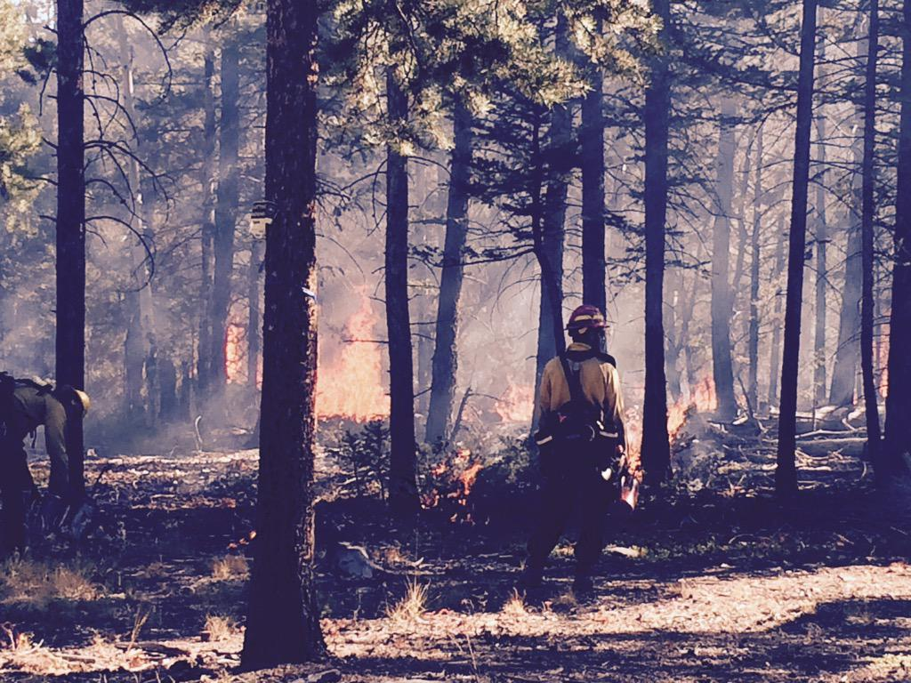 Crews ignite a controlled burn near Mt. Shavano in the Salida Ranger District Wednesday, October 14. _ U.S. Forest Service_107057