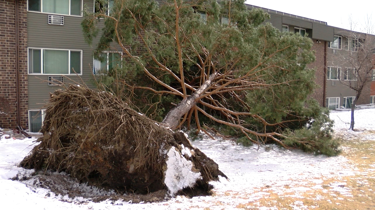 Wind damage from the March 13, 2019 blizzard in Colorado Springs. FOX21 News file photo