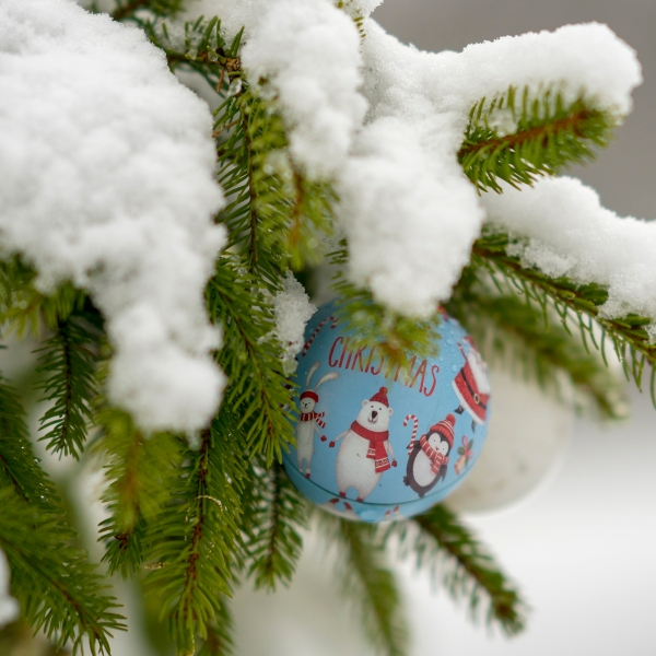 Colorado Springs Apartment Finder: Wishing For A White Christmas? Well…