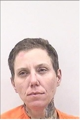 "THERESA MARIE BORCHARD is a White Female, 40 years old, 5'6"" tall, and 158 lbs., with brown hair and blue eyes. BORCHARD is wanted for Kidnapping and Motor Vehicle Theft."