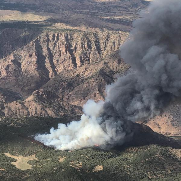 The YMCA Fire as seen from above on Wednesday, July 8. / Courtesy YMCA Fire Information