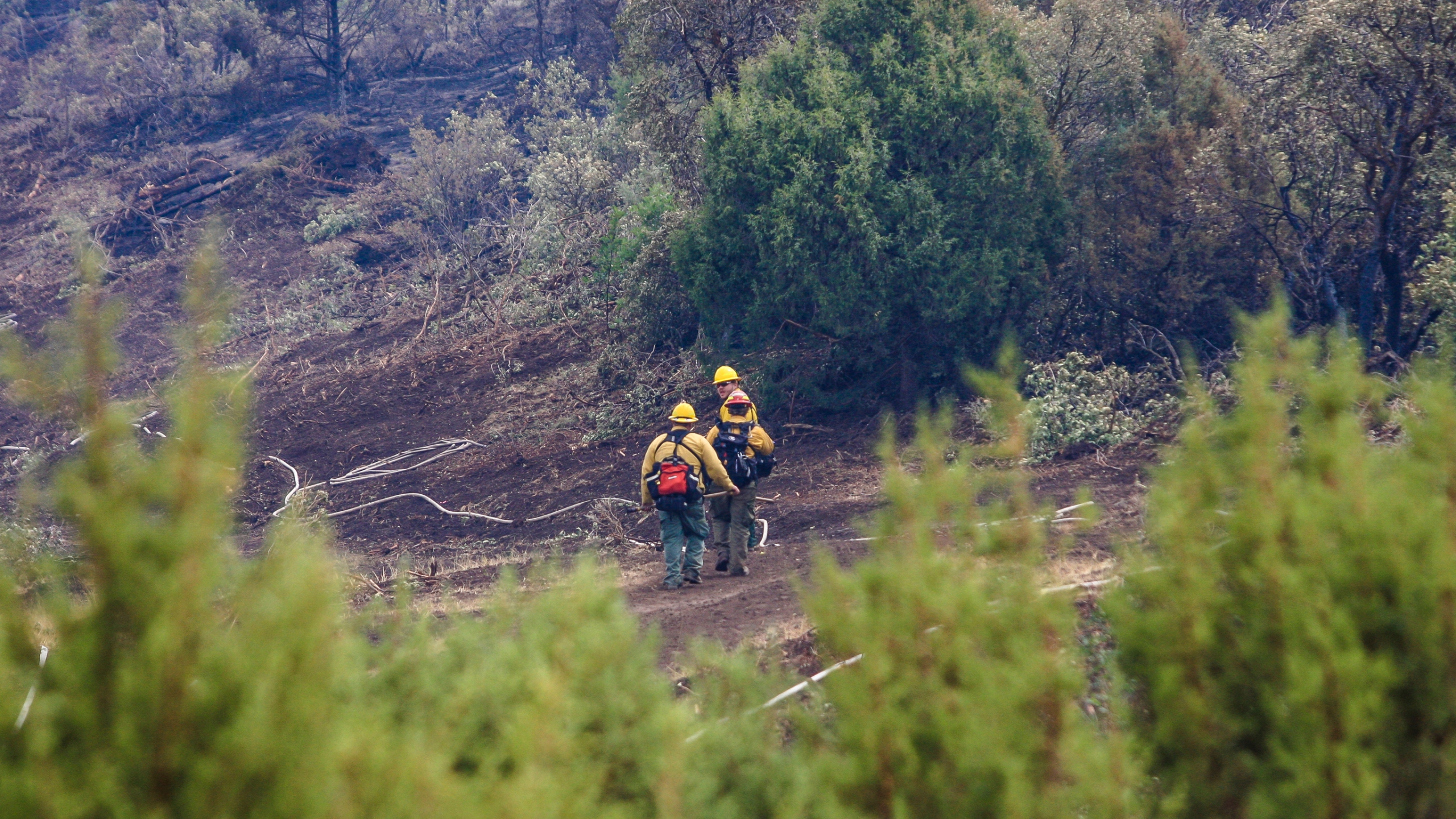Crews go back to work fighting the Grizzly Creek Fire after sheltering from lighting Thursday, Aug. 20, above Bair Ranch, Colo. (Chris Dillmann/Vail Daily via AP)