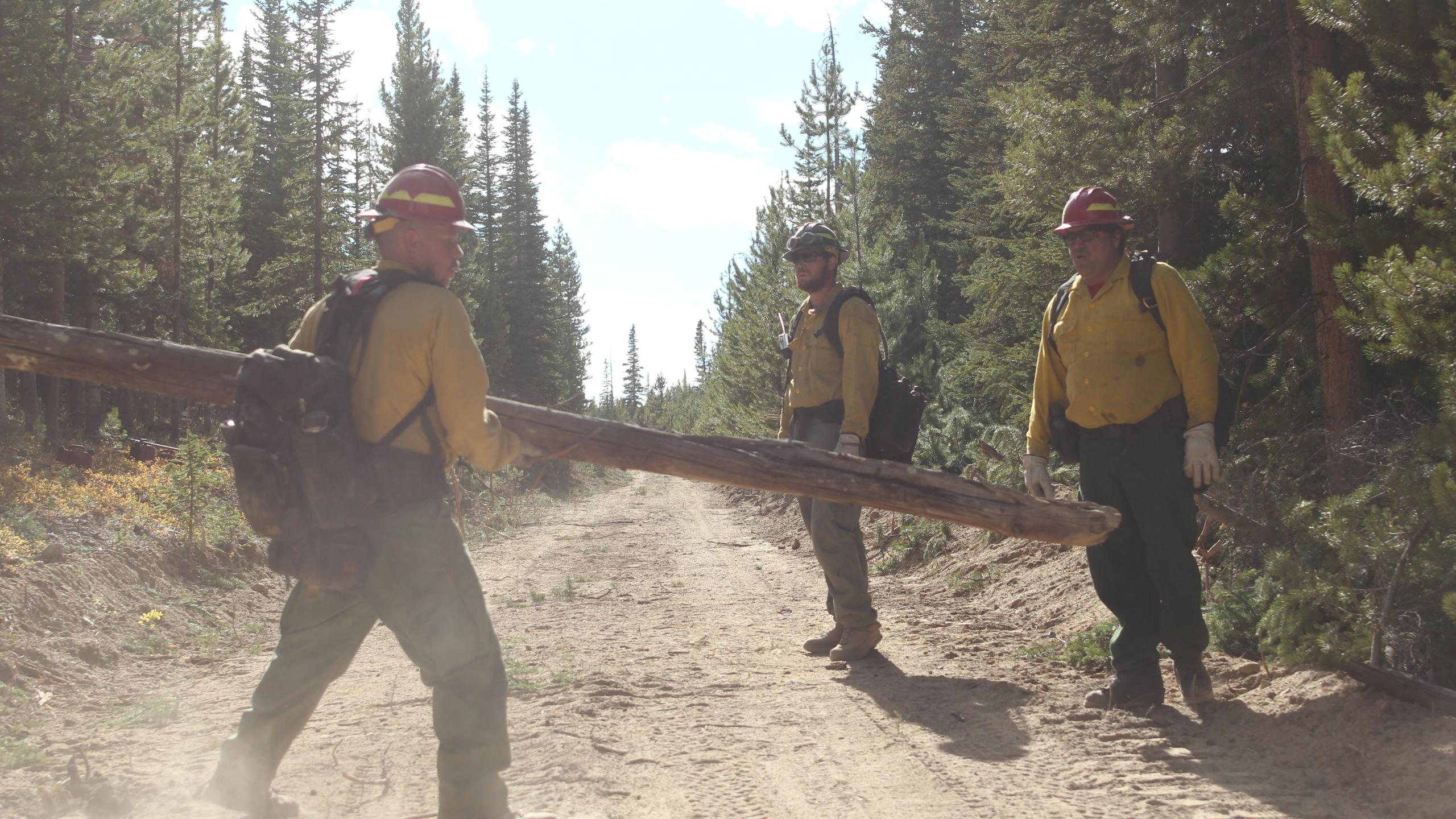 Firefighters removing fuels from the line on the Williams Fork Fire. / Courtesy Williams Fork Fire Information